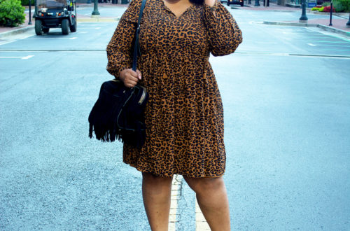 Walmart Time And Tru Leopard Print Dress Fall Trend 2019 Plus Size